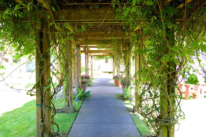 Take a walk in our beautiful garden in Cannon Beach